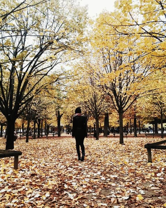 paris-em-4-dias-outono