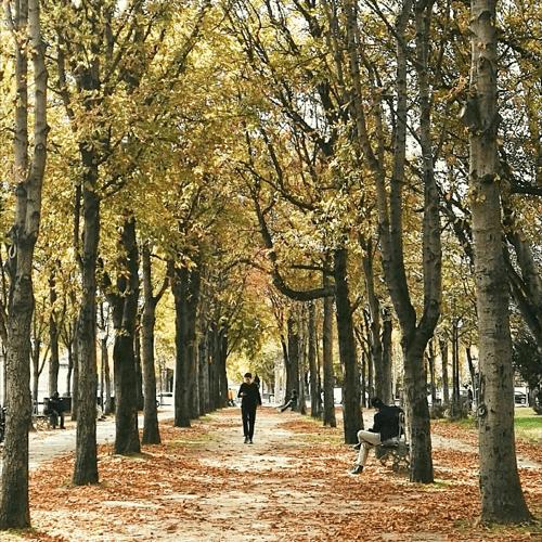clima-em-paris-outono