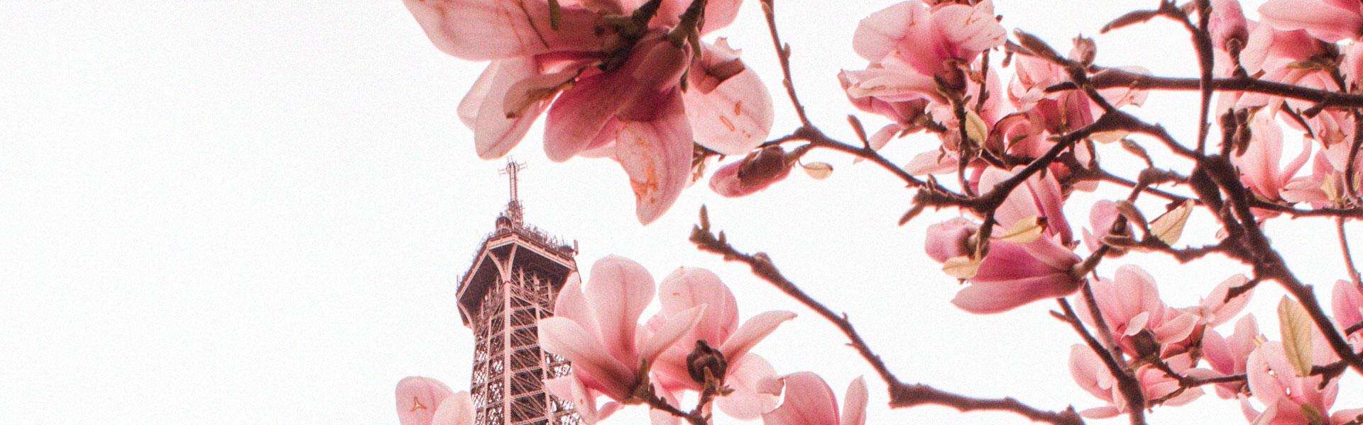 primavera-em-paris-o-que-fazer
